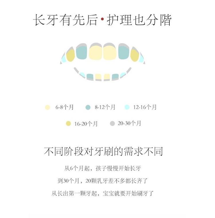 韩国LKIMEX婴幼儿按摩牙刷6-12个月_04.jpg